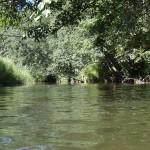 kanoe laivu noma Užava